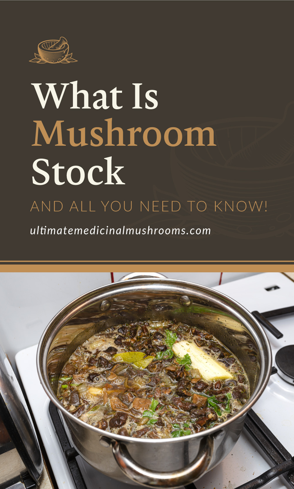 """Text area which says """"What Is Mushroom Stock and All You Need To Know!, ultimatemedicinalmushrooms.com"""" followed by mushrooms with herbs being boiled in a pot to make broth"""