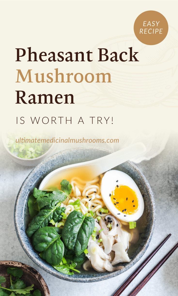 """Text area which says """"Pheasant Back Mushroom Ramen Is Worth A Try!, ultimatemedicinalmushrooms.com"""" followed by a top view of a bowl of mushroom ramen with spinach and hard boiled egg toppings"""
