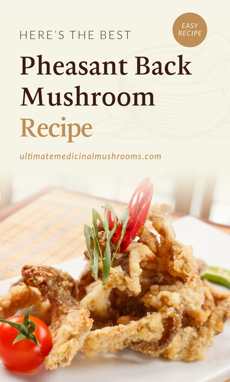 "Text area which says ""Here's The Best Pheasant Back Mushroom Recipe , ultimatemedicinalmushrooms.com"" followed by a tempura, fried pheasant back mushroom"