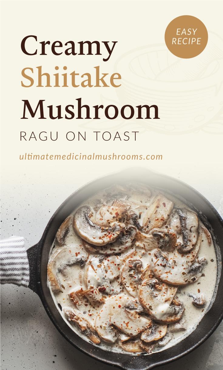 "Text area which says ""Creamy Shiitake Mushroom Ragu on Toast, Easy Recipe,ultimatemedicinalmushrooms.com"" followed by a a photo of a pan filled with creamy mushroom ragu"