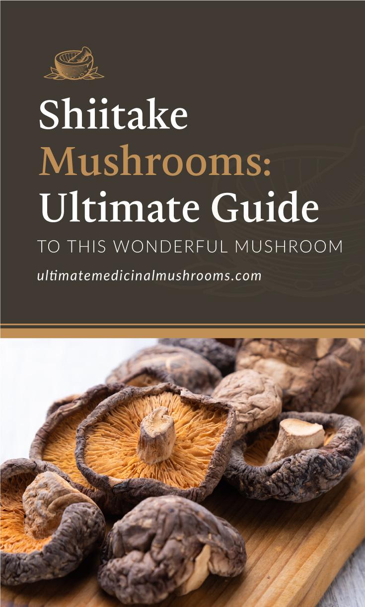 "Text area which says ""Shiitake Mushroom: The Ultimate Guide To This Wonderful Mushroom,ultimatemedicinalmushrooms.com"" followed by a photo of dried shiitake mushrooms"