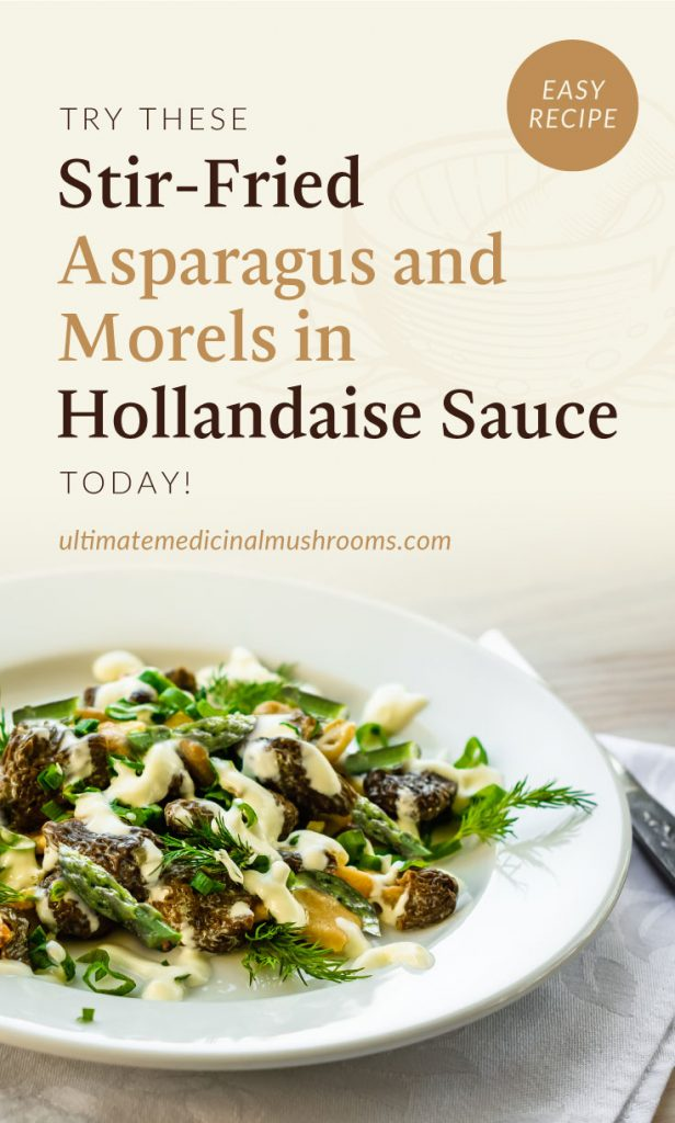 """Text area which says """"Try These Stir-Fried Asparagus and Morels in Hollandaise Sauce Today!, ultimatemedicinalmushrooms.com"""" followed by a close-up view of a stir-fried asparagus and morels served with sauce"""