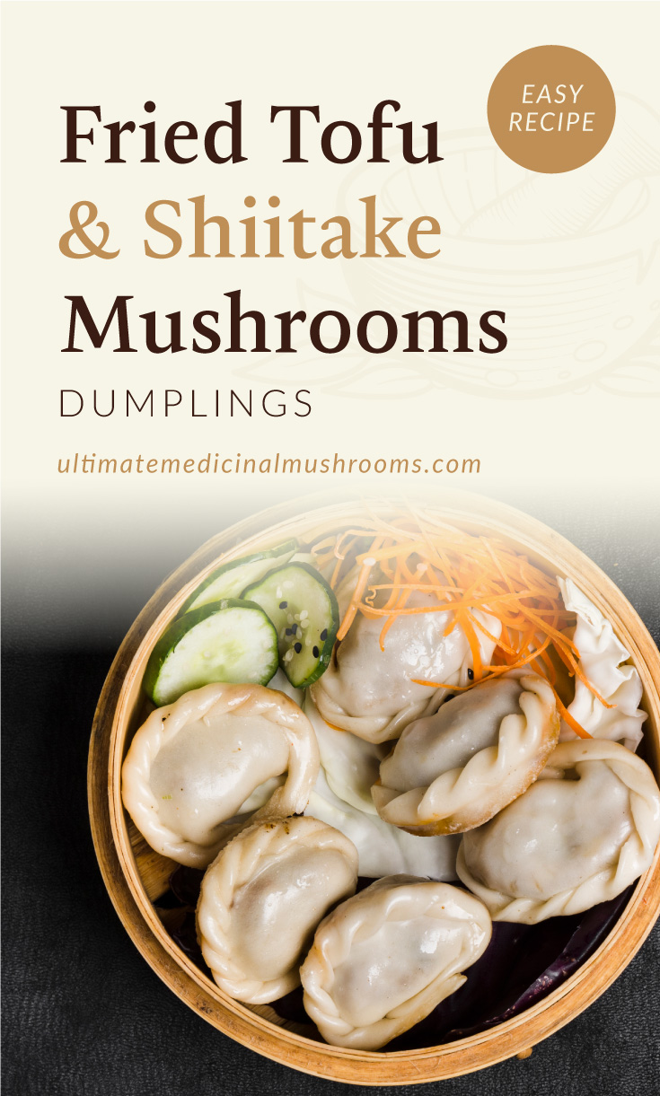 """Text area which says """"Fried Tofu and Shiitake Mushroom Dumplings, Easy Recipe,ultimatemedicinalmushrooms.com"""" followed by a close-up photo of steamed dumplings in a wooden bowl"""