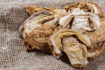 3 Simple Methods for Preserving Mushrooms | ultimatemedicinalmushrooms.com