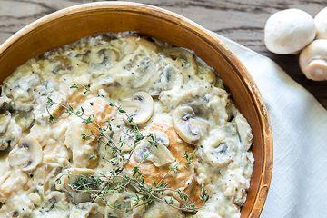 Chicken Fillet in Mushroom Sauce recipe   ultimatemedicinalmushrooms.com