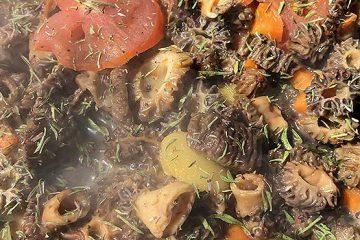 5 Simple Ways to Cook Morel Mushrooms | ultimatemedicinalmushrooms.com