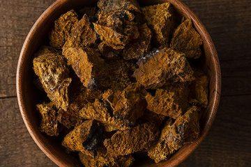 8 Health Benefits of Chaga Mushrooms You May Not Know | ultimatemedicinalmushrooms.com