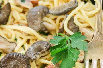 Creamy Oyster Mushroom Pasta with Chicken and Bacon | ultimatemedicinalmushrooms.com