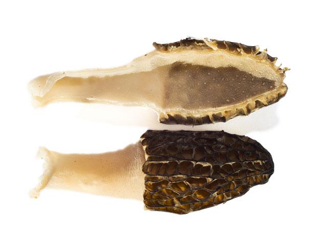 Morel mushrooms sliced in half to reveal hollow insides