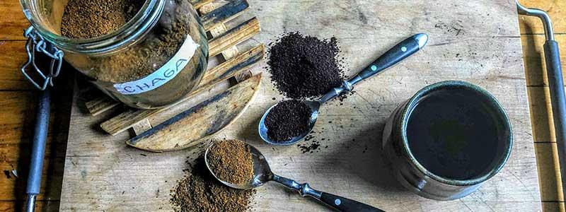 Homemade chaga powder in jar and spoon
