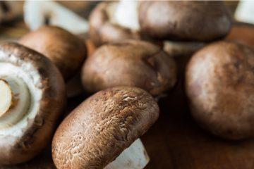3 Ways to Learn How to Cook a Portobello Mushroom | ultimatemedicinalmushrooms.com