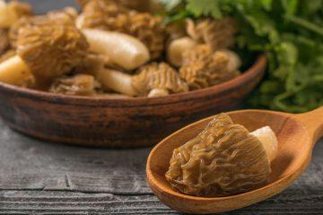 Morel Mushroom Recipe: 5 Recipes To Prepare And More! | ultimatemedicinalmushrooms.com
