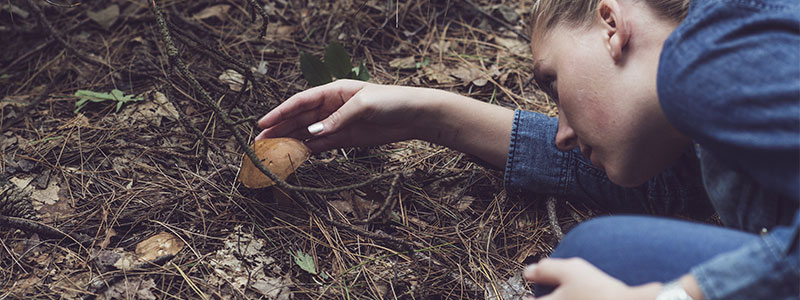 Photo of a woman touching and observing a mushroom growing from the forest ground