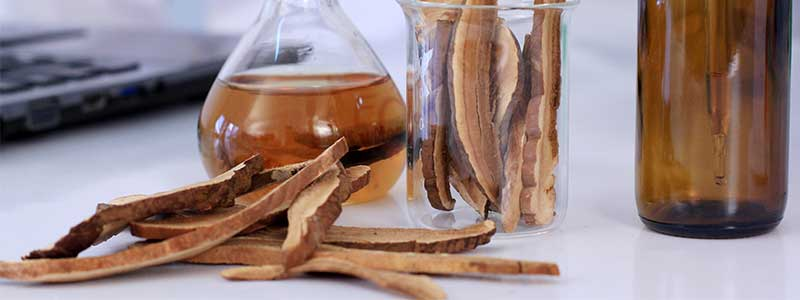 Photo of Reishi slices with jars with beakers and jars filled with mushroom slices and liquids